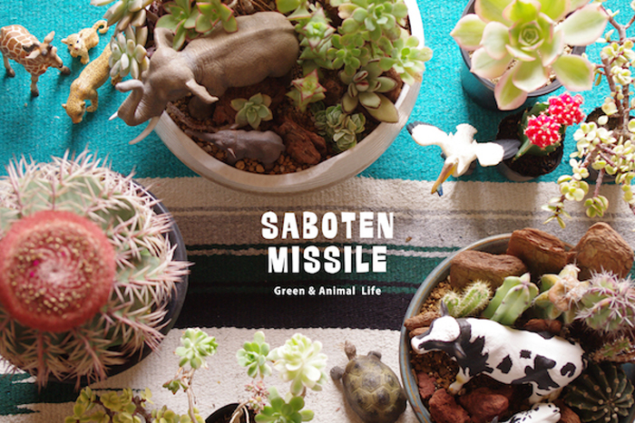 SABOTEN MISSILE(サボテンミサイル)